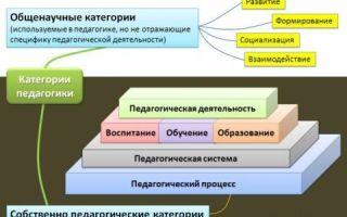 Понятийно-категориальный аппарат — студенческий портал