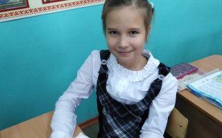 Природные зоны россии — студенческий портал