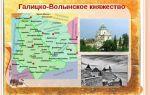 Особенности социально-политического развития галицко-волынской руси — студенческий портал