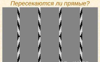 Перпендикулярные прямые — студенческий портал