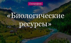 Биологические ресурсы России и их охрана — значение и основные понятия
