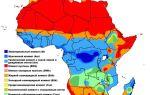 Особенности климата африки — студенческий портал