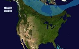 Климат северной америки — студенческий портал