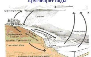 Экологические проблемы гидросферы — студенческий портал