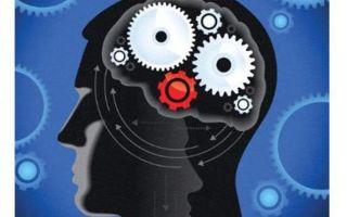 Алгоритмизация: понятие алгоритма, свойства и способы описания