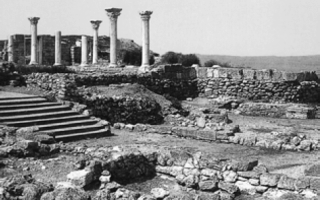 Великая греческая колонизация — причины начала и подробное описание процесса