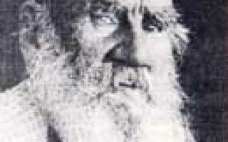 Л. Н. Толстой и его философия — биография и учения писателя, афоризмы и известные цитаты
