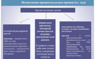 Понятие и назначение процессуальных сроков — виды в гражданском процессе