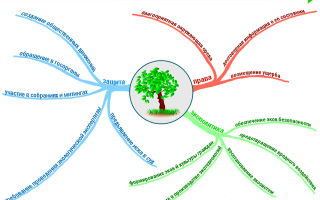 Обязанности граждан в сфере охраны окружающей среды — студенческий портал