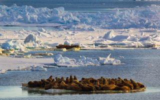 Моря и внутренние воды россии — студенческий портал