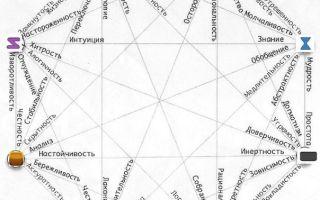 Системно-векторная психология — студенческий портал
