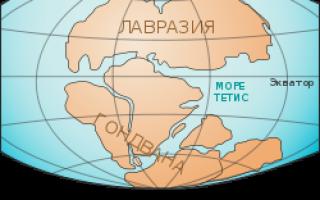 Материки планеты Земля — история и расположение в разные периоды развития