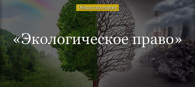 Объекты и субъекты экологического права - Студенческий портал