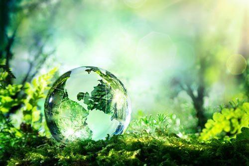 Экологическая безопасность - Студенческий портал