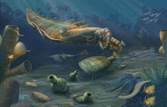 Геологическое время, эры и периоды в истории Земли - Студенческий портал