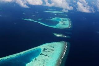 Мировой океан. Состав Мирового океана - Студенческий портал