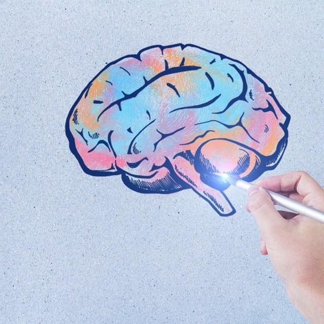 Особенности онтогенетического развития психики - Студенческий портал