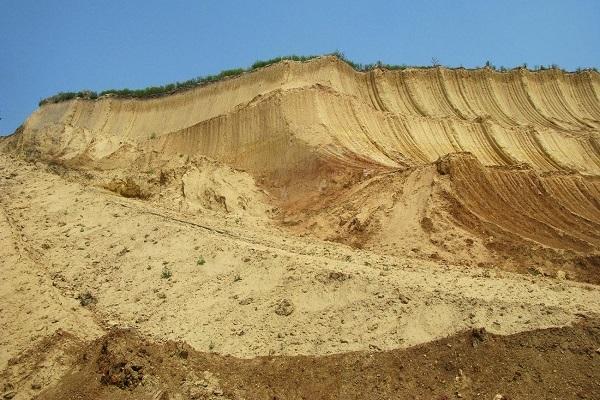 Почва и её значение для жизнедеятельности растений - Студенческий портал
