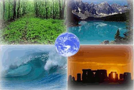 Экологическая экспертиза - Студенческий портал