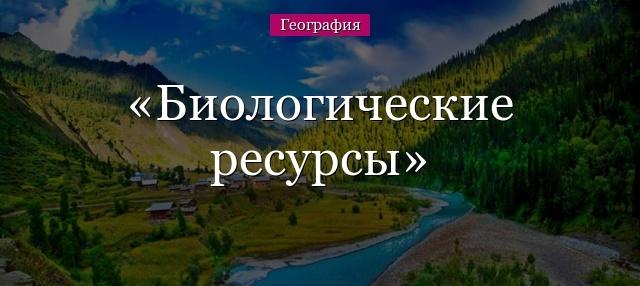 Биологические ресурсы России и их охрана - Студенческий портал