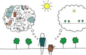 Биоэнергетика человека - Студенческий портал