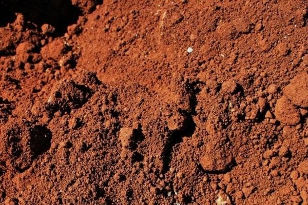 Формирование и свойства почвы - Студенческий портал