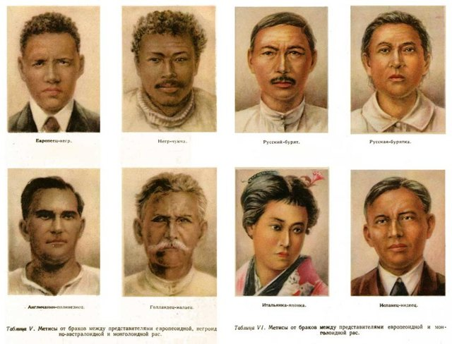 Человеческие этносы и расы - Студенческий портал