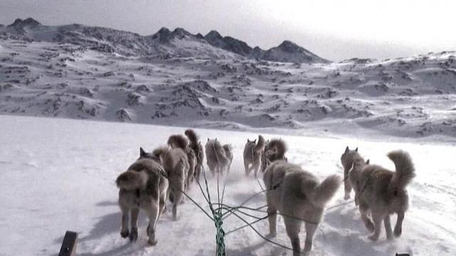 Открытие Южного полюса - Студенческий портал