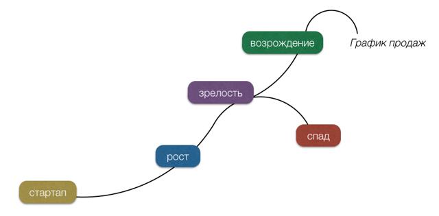 Жизненный цикл организации - Студенческий портал