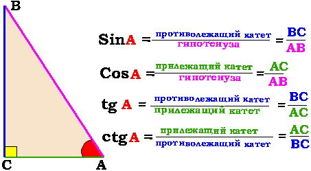 Треугольники, виды треугольников, свойства треугольников - Студенческий портал