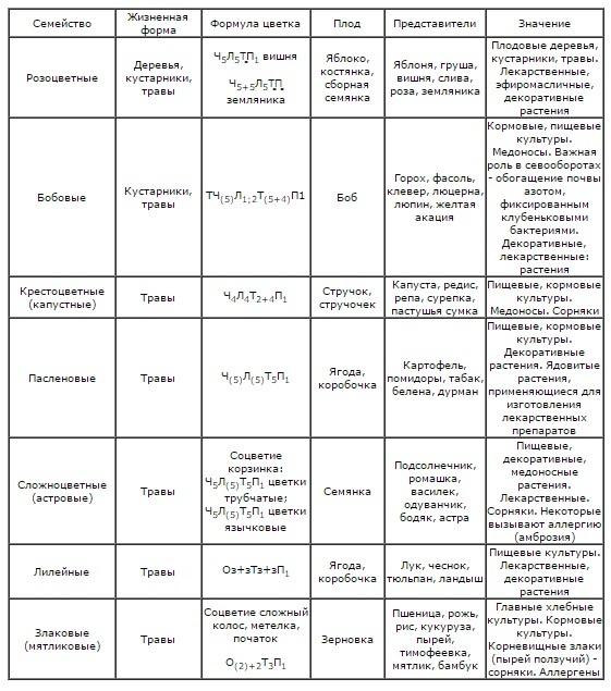 Характерные признаки покрытосеменных - Студенческий портал