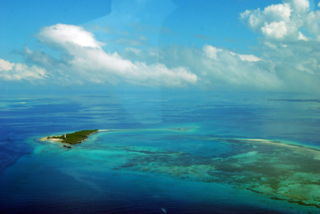 Особенности Тихого океана, Атлантического, Индийского и Северного Ледовитого - Студенческий портал