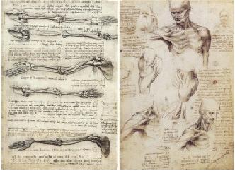 Леонардо да Винчи - Студенческий портал