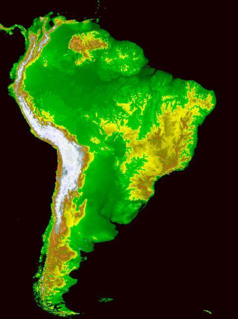 Разнообразие природы Южной Америки - Студенческий портал