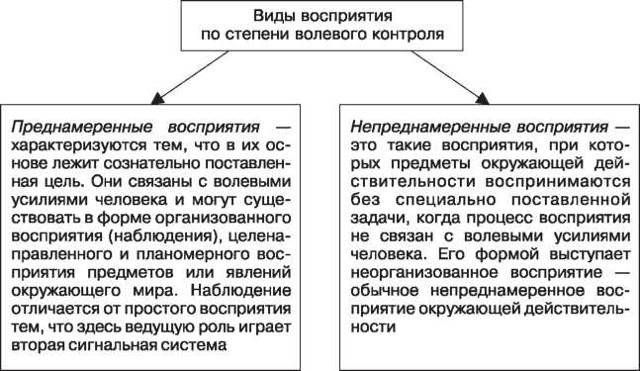 Классификация восприятия - Студенческий портал