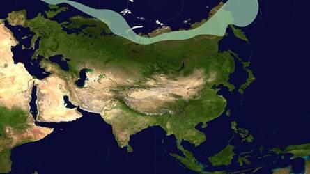 Климат Евразии - Студенческий портал